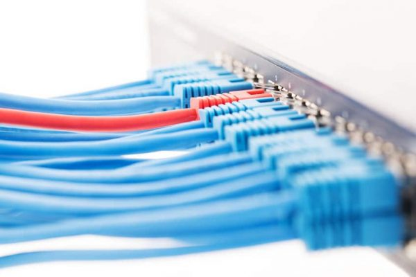 Network switch and ethernet cables isolated on a white background